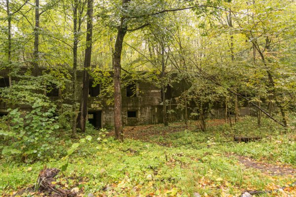 Wolf's Lair, Adolf Hitler's Bunker in Poland. First Eastern Front military headquarters in World War II. Complex was blown up and abandoned on 1945. Autumn, chaparral grown ruins, trees, leaves.